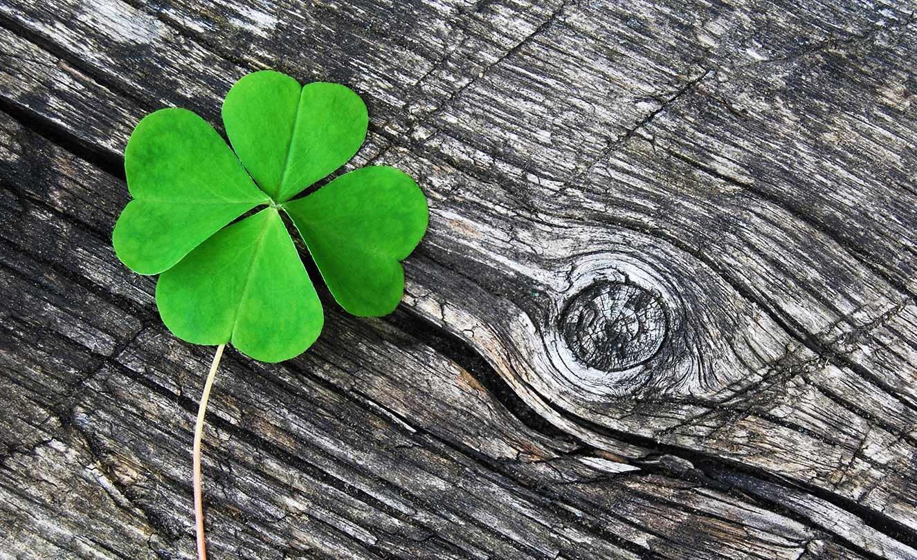 Four leaf clover. Luck is for the prepared.